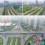 Savills: Bất động sản vùng ven Hà Nội hút nhà đầu tư